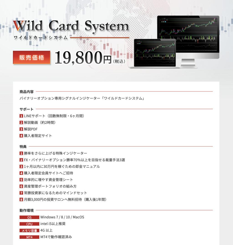ワイルドカードシステム(Wild Card System)内容