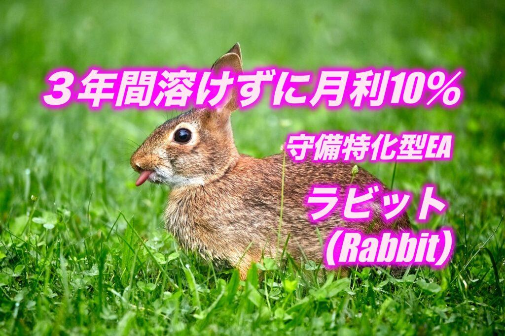 ラビット(Rabbit)EA FX自動売買ツール 評判・レビュー